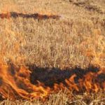 Nueva plataforma para la solicitud de permisos de quema